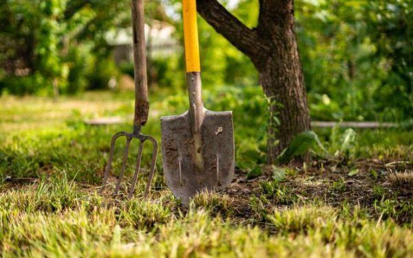 Narzędzia do uprawy ziemi potrzebne w każdym ogrodzie